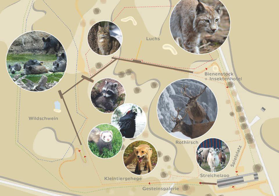 Ausflug Mehlmeisel – Wildtierpark